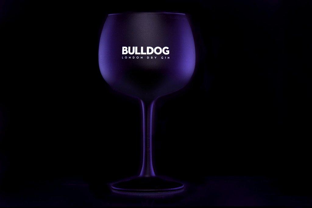 Bulldog-Gin08535-2.jpg